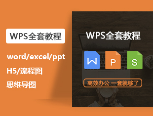 WPS Office与MS Office的区别视频教程