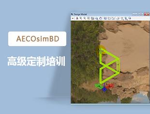 AECOsimBD高级定制培训_台湾录制