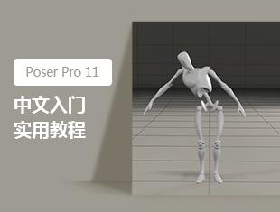 Poser Pro 11中文入门实用教程