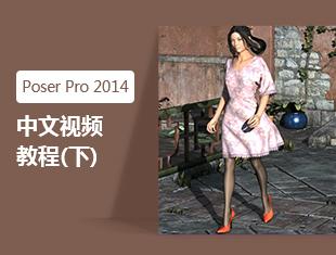 Poser Pro 2014中文视频教程(下)