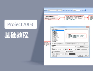 Project2003基础教程