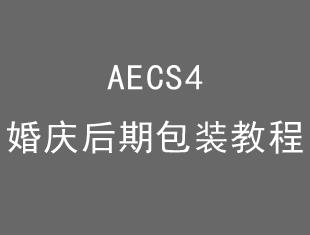 AE<esred>CS</esred>4婚庆后期包装教程