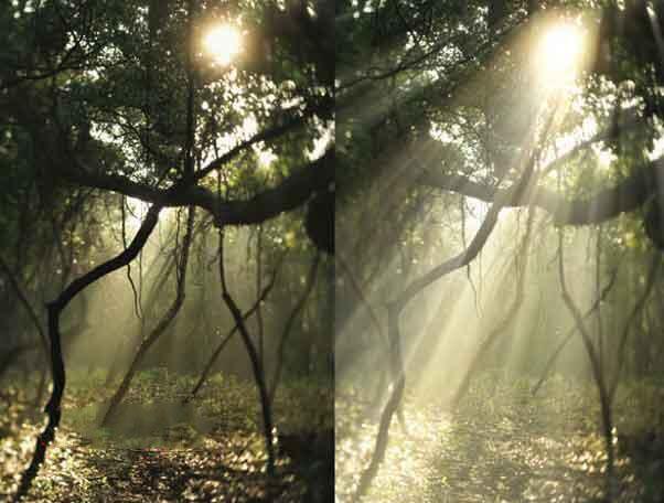 Photoshop自然光照插件Digital Film Tools Light 4.0 v6.1