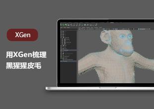 中级-肩背专家:用XGen梳理黑猩猩皮毛-无声音讲解