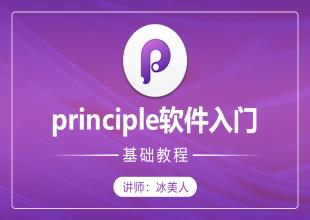 principle原型设计软件零基础入门教程(mac系统必学)