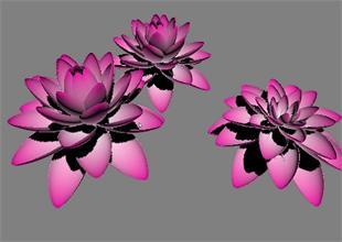 如何利用3dmax制作莲花盛开动画