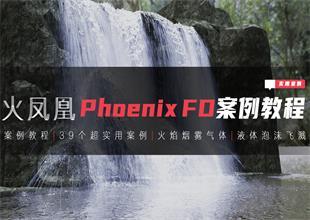 火凤凰phoenixFD案例课程